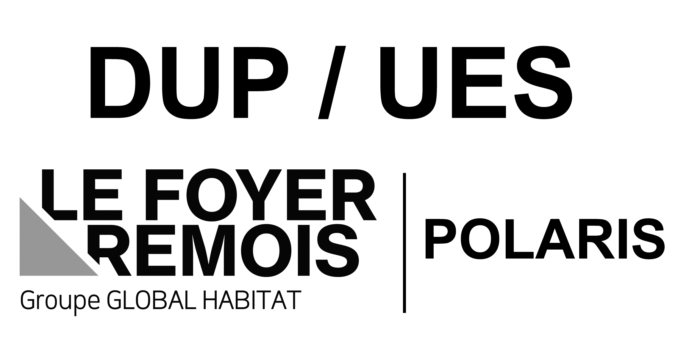 Logo_FOYER_REMOIS_POLARIS (1)
